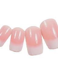 24PCS Branco gradientes Design Rosa Dicas Nail Art com cola