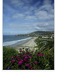 esboçado ensolarado roller sombra à beira-mar paisagem
