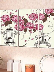Dancing  Canvas Art Flowers And Bird Cage Set of 3