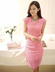 Women's Bodycon Slim Waist Lace Dress