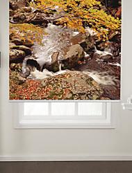 style de l'art photographique rouleau ruisseau de montagne d'automne ombre
