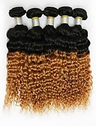 1Pcs/Set 20inch Great 6A Brazilian Virgin Human Hair Deep Curly Ombre Hair Weave (1B / #27)