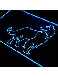 j521 collie chien animalerie signe don d'affichage néon de lumière