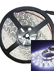 500CM 30W 300LED 3528SMD DC12V Strip Light RGB IP68 Waterproof Strip Light White Transparent Remote Control