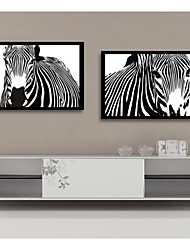 Zebra Decorative Painting  Framed Canvas Print Set of  2