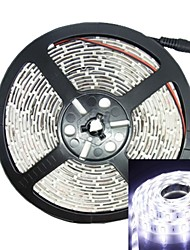 500CM 75W 300x5050 SMD LED 3000-3600LM 6000-6500K DC12V IP68 Waterproof Strip Light White