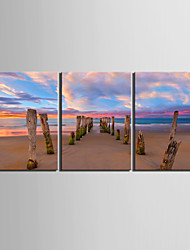 Stretched Canvas Art Landscape Beach Scenery  Set of 3