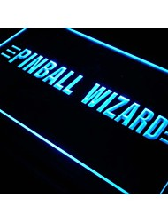 s080 Pinball Wizard Game Shop Lure Neon Light Sign