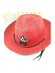 Baby Child Boys pentagram Western Cowboy Straw hat cap