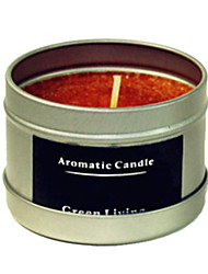 12 Hours Lasting Apple Cinnamon Fragrance Natural Carnauba Candle