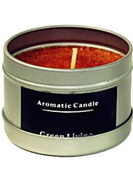 12 horas com duração de maçã canela fragrância da vela de carnaúba naturais
