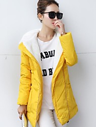 Women's Clothing Dazhongjie Bodycon Fashion Hooded Down & Parka