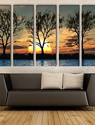 lona esticada arte do sol sob as sombras do conjunto pintura decorativa de 5