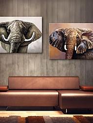 e-HOME estiró arte determinado de la pintura de la decoración elefante lienzo de 2