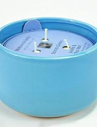 aromall® soja Bougie parfumée 450g jasmin&45hrs menthe sauvage de support en céramique bleu tasse durée de combustion