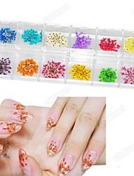 12 kleuren natuurlijk materiaal droge bloem nail art decoraties