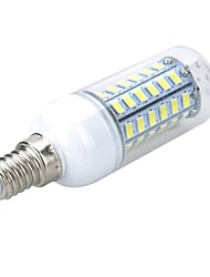 E14 5W 500-600LM 6500K/3000K 56-5730 SMD Warm/Cool White Light LED Corn Bulb (AC 220~240V)