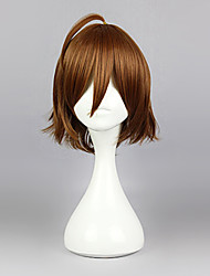 Cosplay Wigs Akame Ga Kill! Cosplay Brown Short Anime Cosplay Wigs 35 CM Heat Resistant Fiber Male