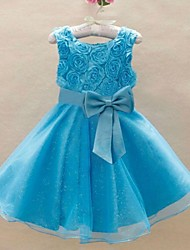 Girl Princess Wedding Party Dresses