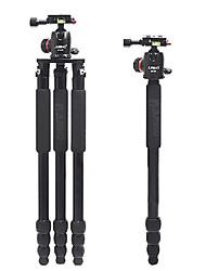 Jusino E254 + BT02 trípode abatible para cámaras réflex