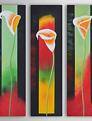 Oil Painting Modern Floral Morning Glory Set of 3 Hand Painted Canvas with Stretched Frame