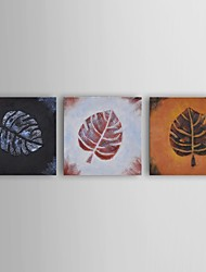 Oil Painting Modern Floral Leaf Rubbing Trio Set of 3 Hand Painted Canvas with Stretched Frame
