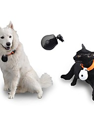 Exclusive Design Mini Digtal Pet Camera with Showing Phone Number