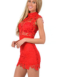 Hualala Women's Fashion Lace Embroidery Cut Out Turtle Neck Dress