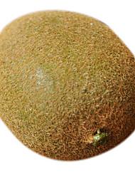 vívida kiwi fruta decorativa
