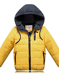 Boy's Winter Thick Long Sleeve Down & Cotton Padded (Polyester) DOWN JACKET