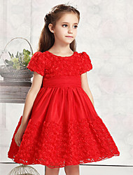Ball Gown Knee-length Flower Girl Dress - Cotton / Tulle Short Sleeve Jewel with