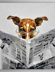 óleo pintura abstrata canvas o cão mão jornal leitura pintadas modernos, com quadro esticado