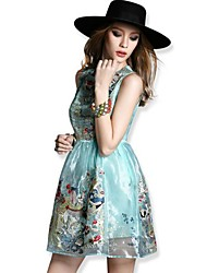 TS Casual Embroidery Organza Inelastic Sleeveless Slim Dress