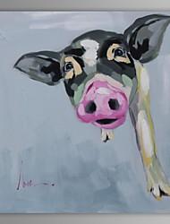 Картина маслом современного абстрактного свинья ручной росписью холст с растянутыми кадра