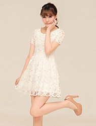 Women's Casual Micro Elastic Above Knee Dress (Lace)
