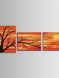 iarts pintura al óleo moderna de la flor que florece árboles paisaje ramas conjunto de lienzos pintados 3 a mano con el marco estirado