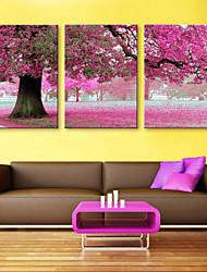 e-Home® opgespannen doek kunst perzikbomen decoratie schilderij set van 3