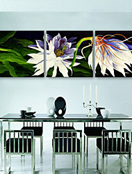 E-HOME® Stretched Canvas Art White Flowers Decorative Painting  Set of 3