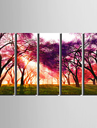 E-HOME® Stretched Canvas Art The Woods Decorative Painting  Set of 5