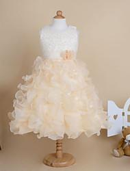 Kid's Cute/Party Dresses (Organza)