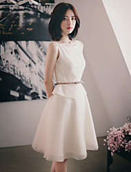 Women's Casual/Lace/Cute/Party/Work Elegent Sleeveless Knee-length False Two Dress (Lace/Organza)