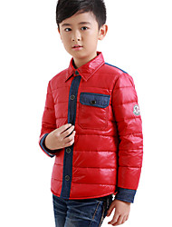 Boy's Winter/Fall Inelastic Medium Long Sleeve Down & Cotton Padded (Others)