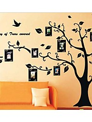 Photo Frame Tree Wall Stickers Zooyoo2141 Kids Room Wall Arts Living Room Wall Decals