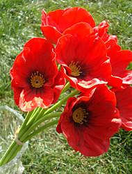 12.9''mini pavot bouquet 8 pcs / bouquet pu matériels de latex de bonne qualité décorations pour la maison