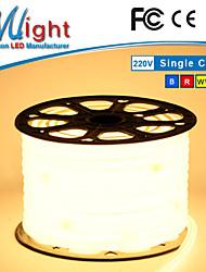 mlight 50 mètres 5050 tubes de néon flexibles RoHS IP65 de bande LED de bureaux oem 110v 220v ultra lumineux