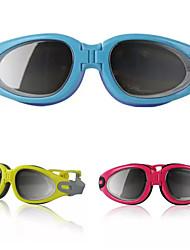 Новая мода унисекс противотуманные УФ щит защиты водонепроницаемый оптики, очки плавание очки + окно