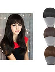 Clip naturel sur l'extension de cheveux synthétiques frange frange pour les femmes