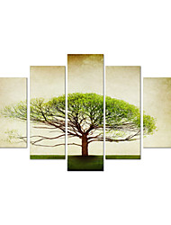 VISUAL STAR®Decorative Stretched Canvas Tree Oil Painting Modern Wall Art Ready to Hang