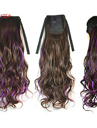 The New Color Hair Aail Of A Horse  Black Purple Highlights