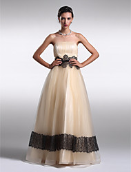 Formal Evening Dress - Pearl Pink Plus Sizes / Petite A-line / Princess Strapless Floor-length Organza